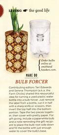 Bulb forcer