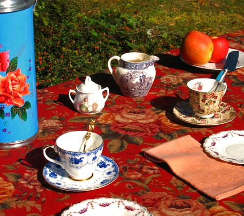 Fall picnic 4