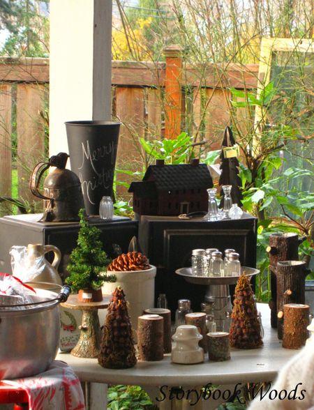Christmas house 1 2009