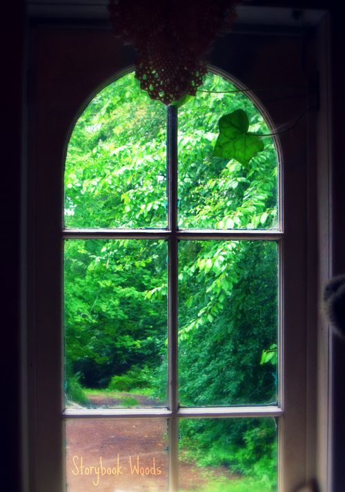 Ivy window