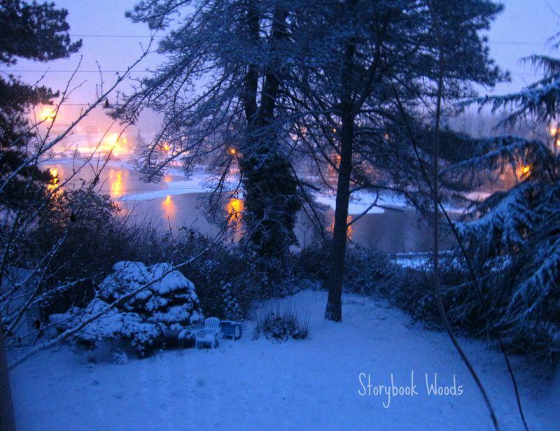 Snow 1172012