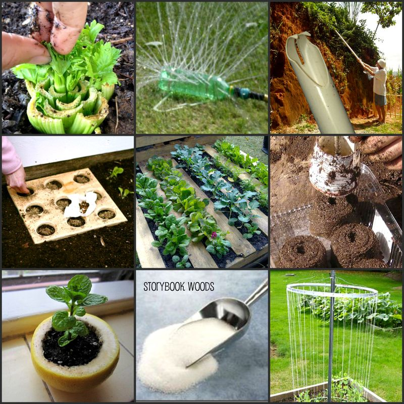 Grow collage