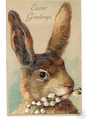 E  bunny