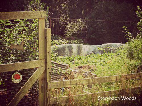 A farm 4
