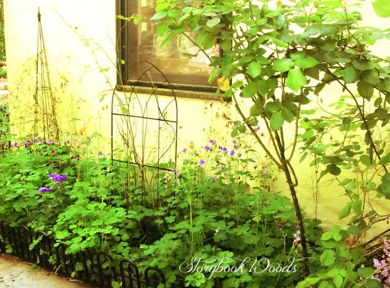 Sp garden3