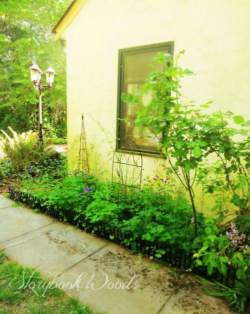 Sp garden2