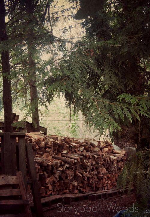 Wood13