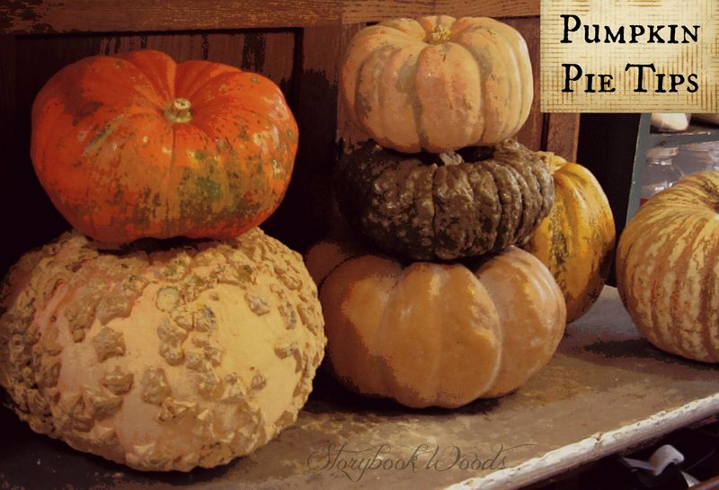 Pumpkin pie tips