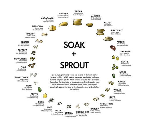 Spourtsoak