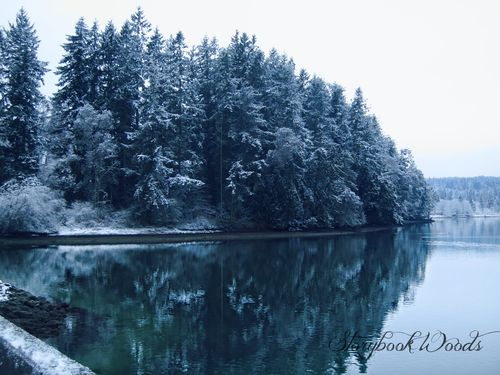 Snow147