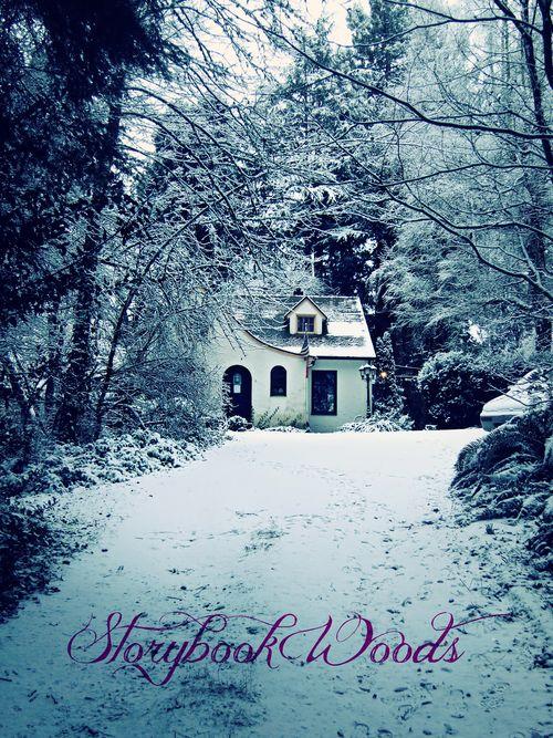 Snow14woods