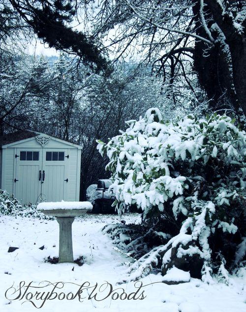 Snow141