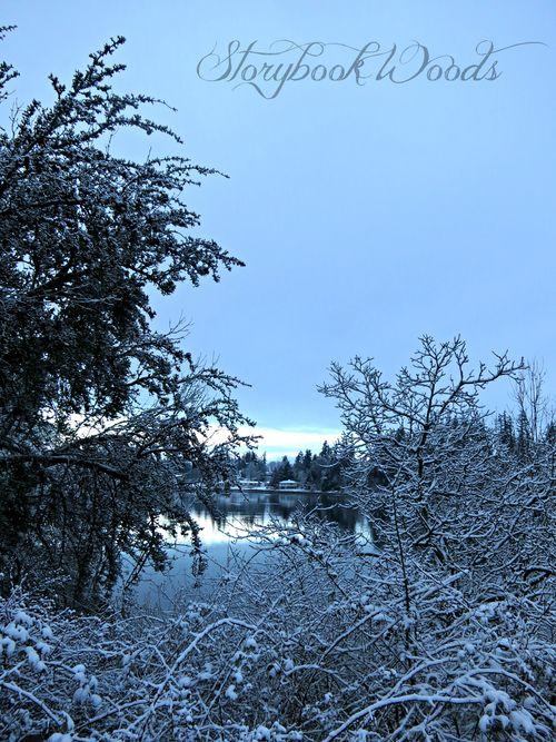 Snow142