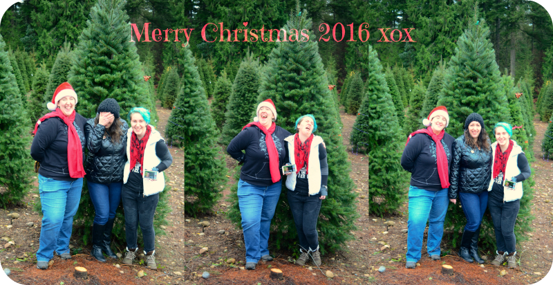 Christmas 2016 Storybook Woods