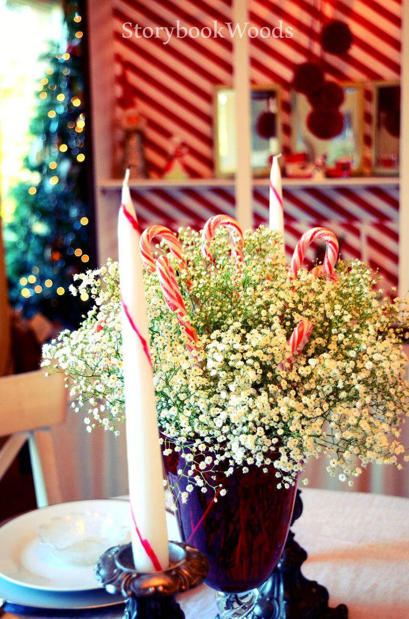 Red and white dining3 Storybook Woods