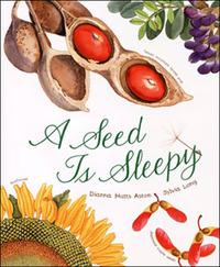 A_seed_is_sleepy